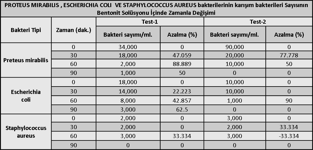 bakteri-sayisi-bentonit