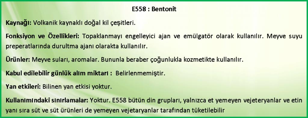 e558bentonit